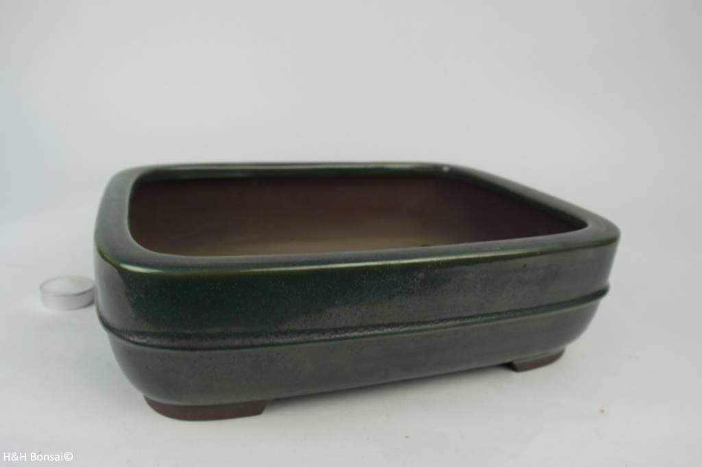 Tokoname, Bonsai Pot, no. T0160152
