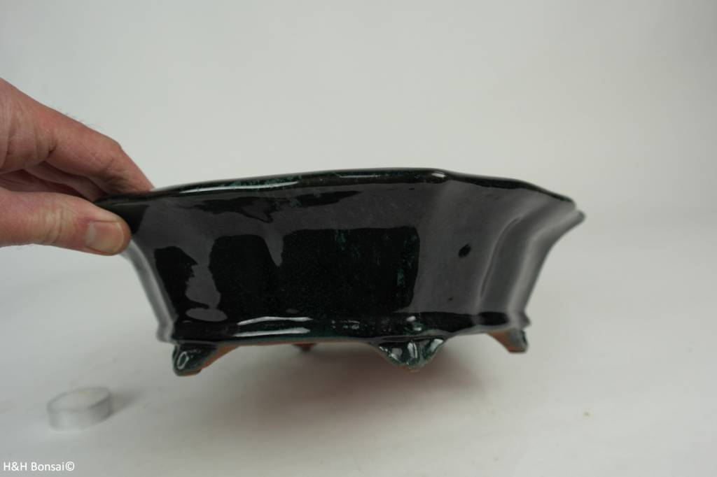 Tokoname, Bonsai Pot, no. T0160169