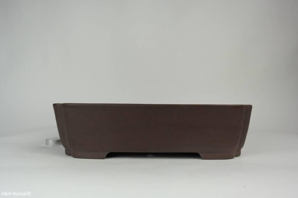 Tokoname, Bonsai Pot, no. T0160173