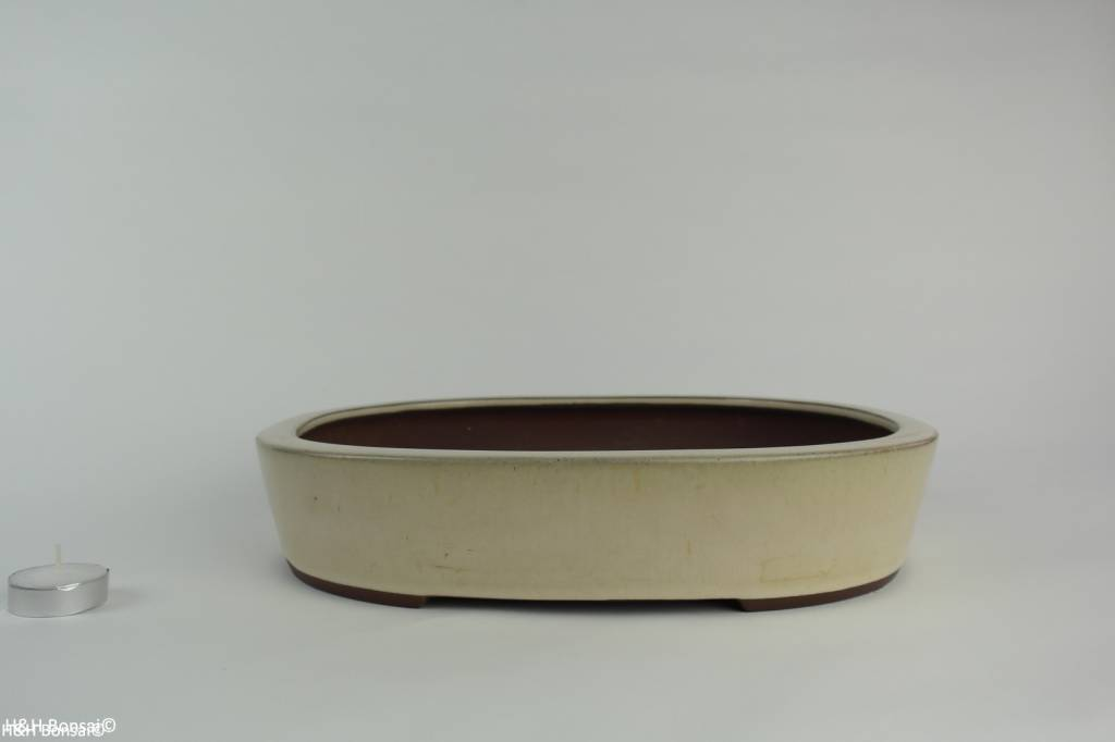 Tokoname, Bonsai Pot, no. T0160184