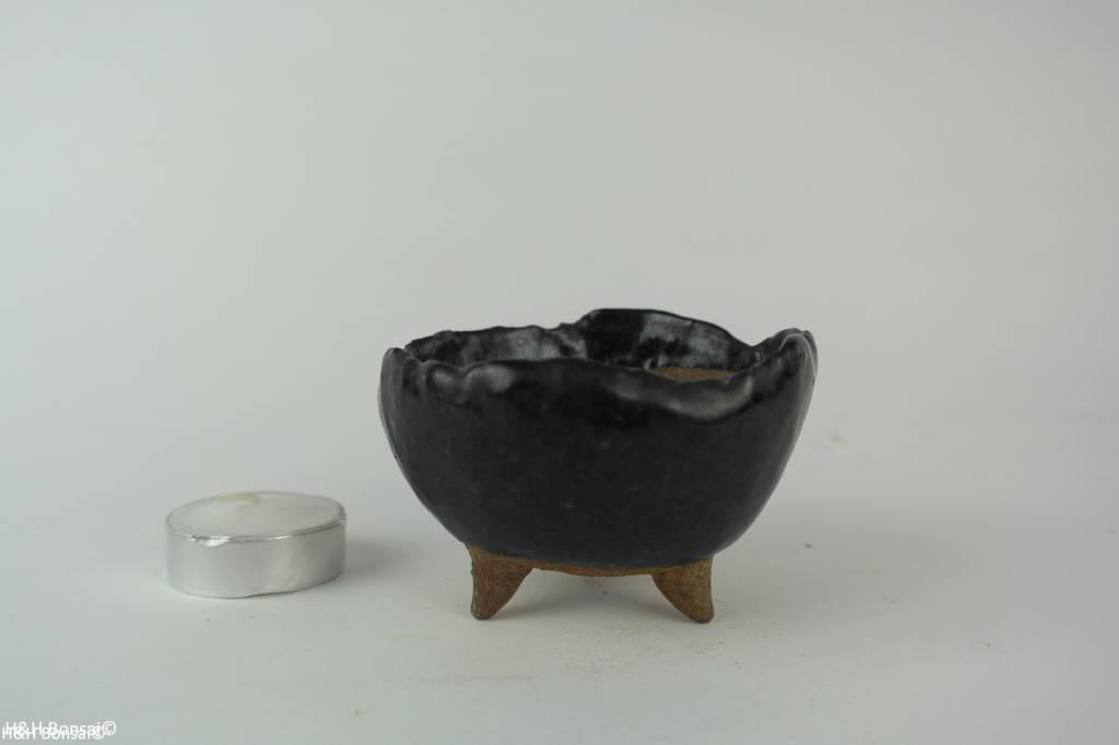 Tokoname, Bonsai Pot, no. T0160195