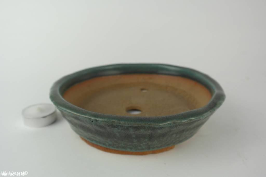 Tokoname, Bonsai Pot, no. T0160202