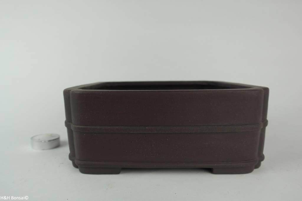 Tokoname, Bonsai Pot, no. T0160227