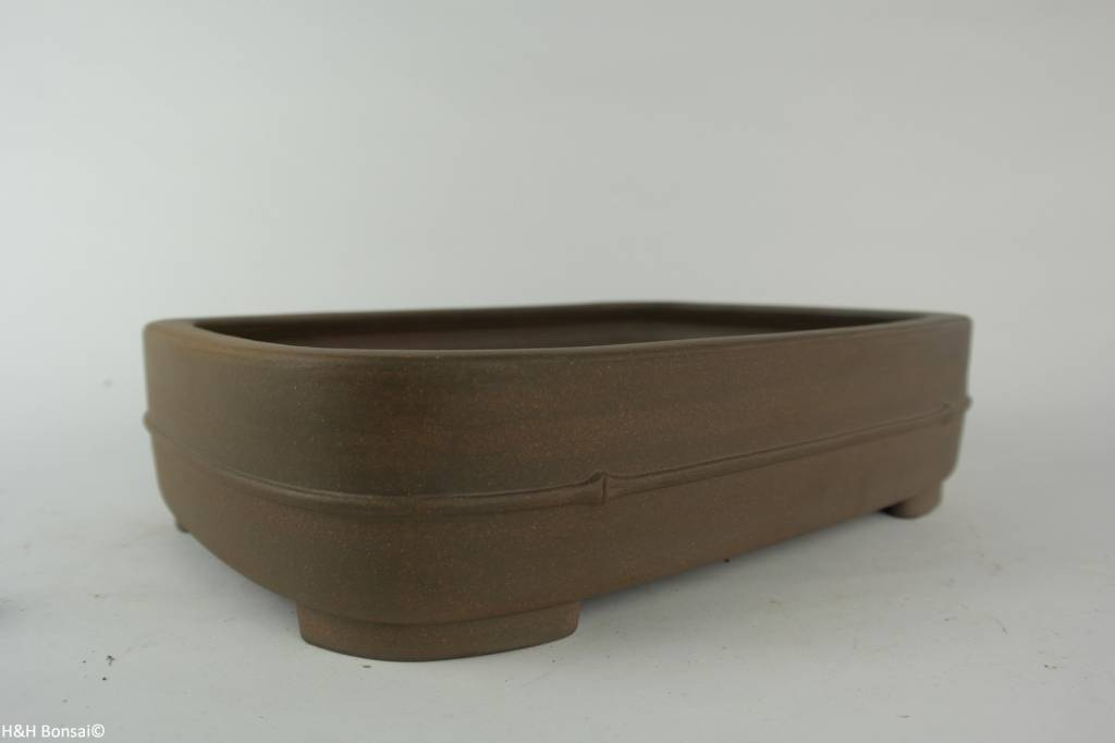Tokoname, Bonsai Pot, no. T0160234