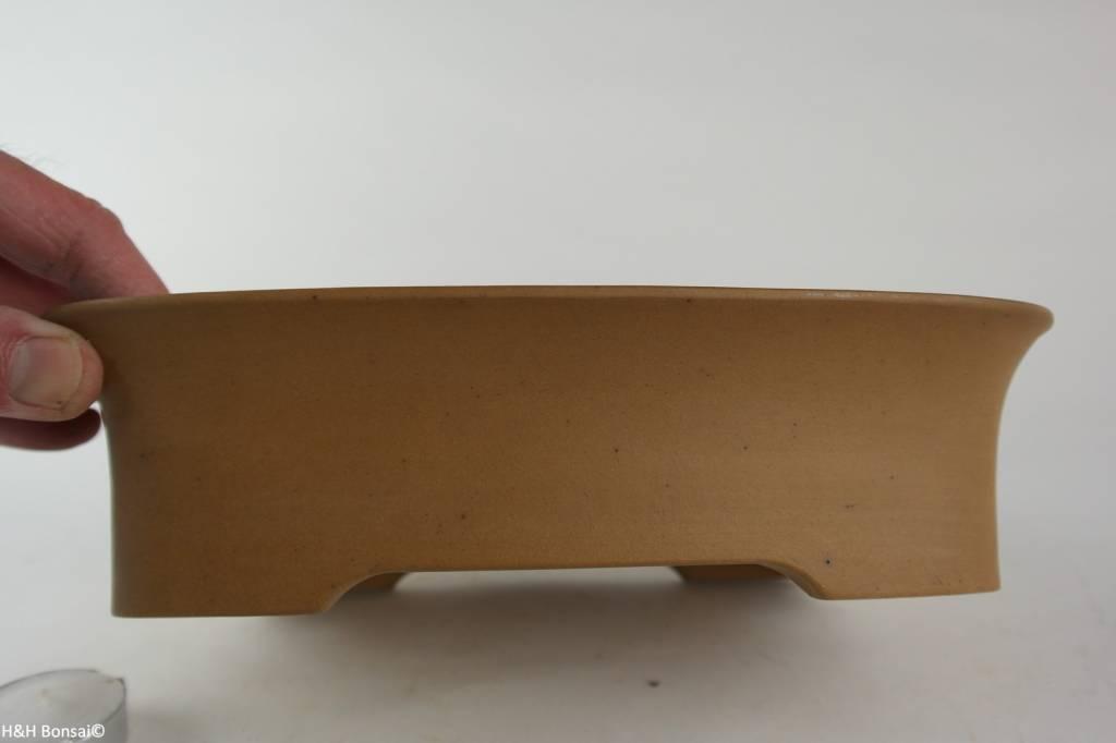 Tokoname, Bonsai Pot, no. T0160240