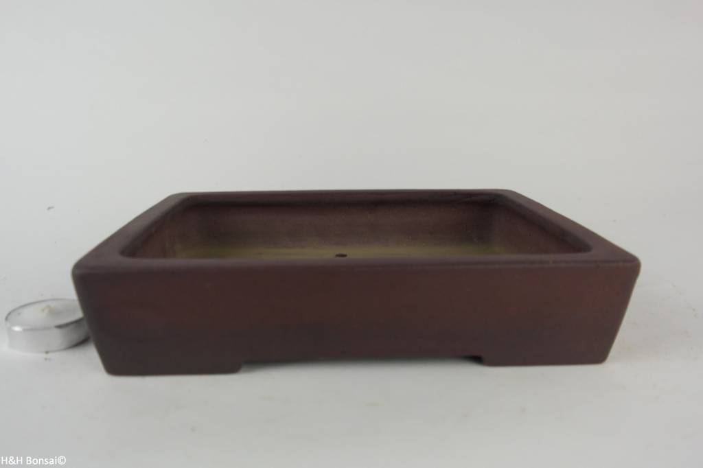 Tokoname, Bonsai Pot, no. T0160251
