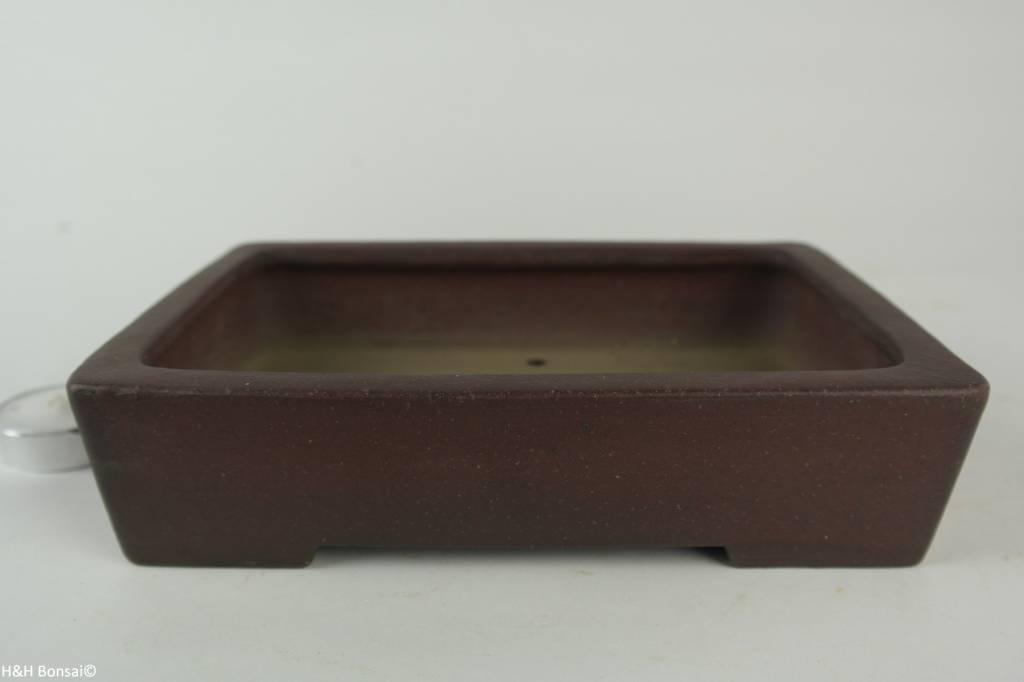 Tokoname, Bonsai Pot, no. T0160252