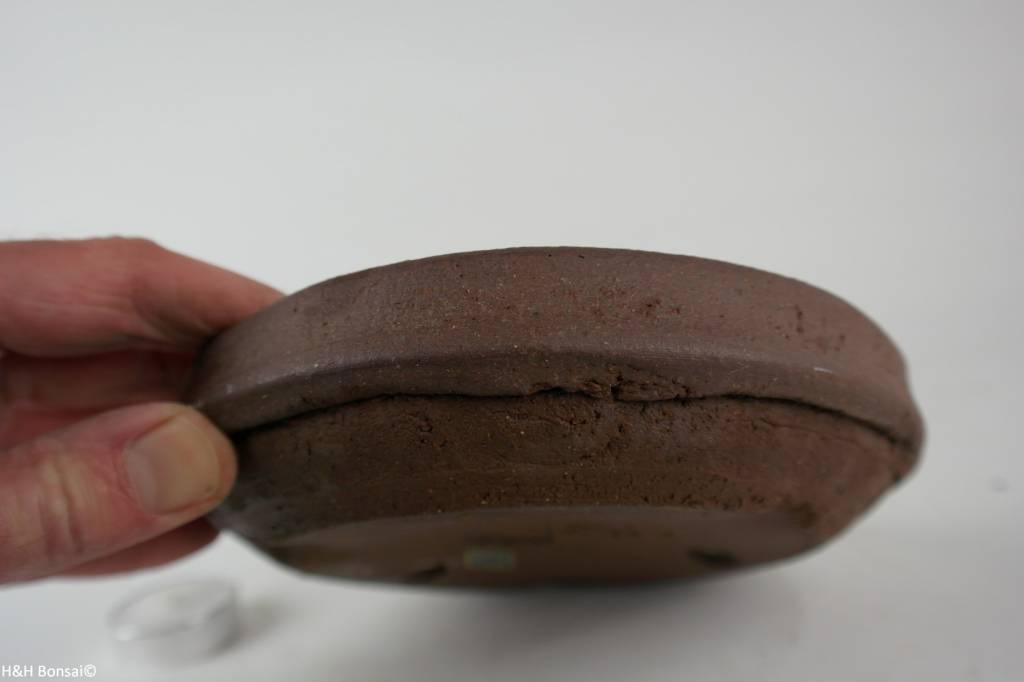 Tokoname, Bonsai Pot, no. T0160254