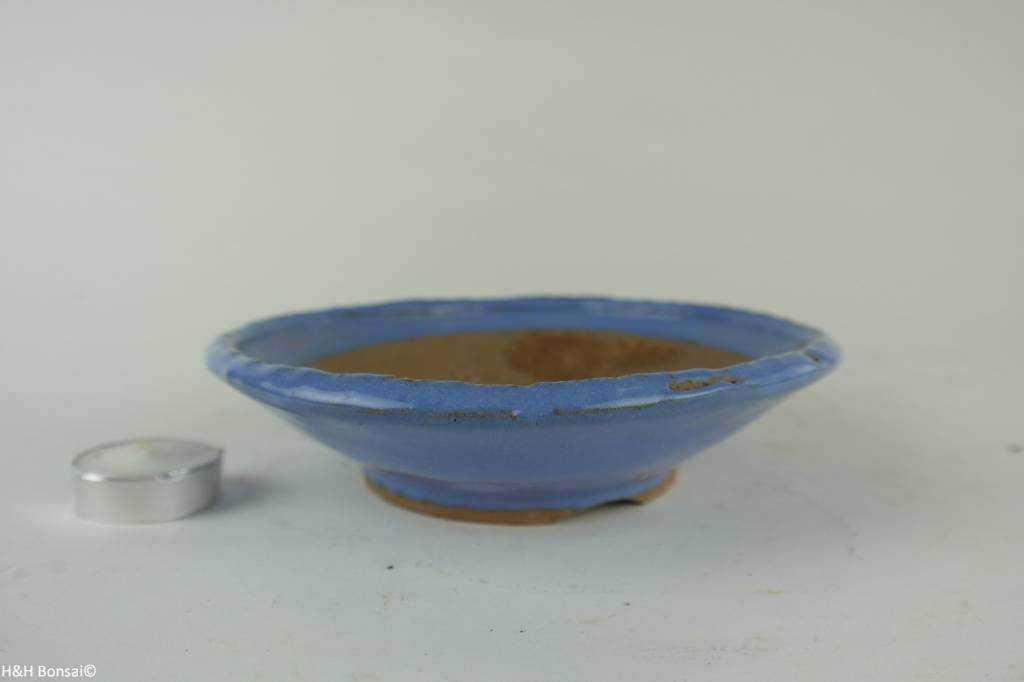 Tokoname, Bonsai Pot, no. T0160256