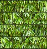 Gipea 3 D Band Bamboe