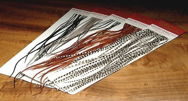 Whiting Farms 100 Saddle Hackle Packs