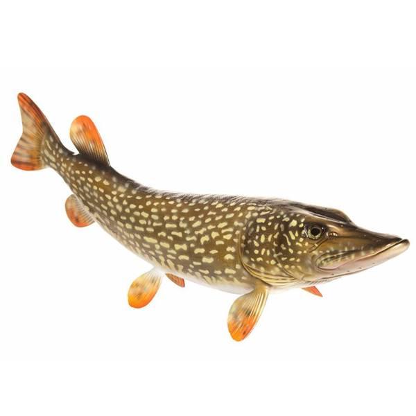 Fish Replica's Snoek