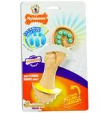 Nylabone Dental Chew Bristle Brush maat S
