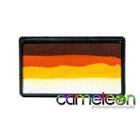 Cameleon Colorblock Paintopia