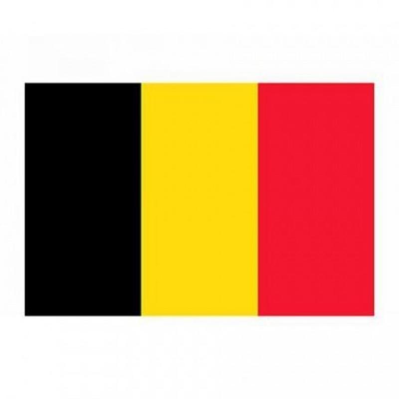 Petit drapeau Belgique