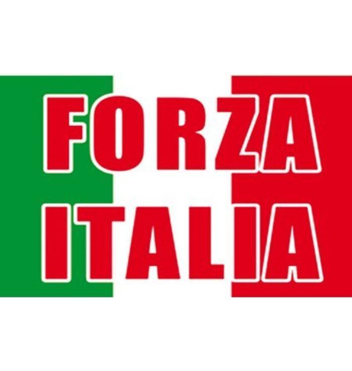 Vlag Forza Italia