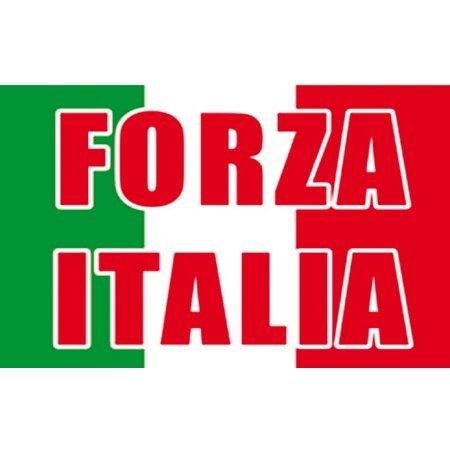 Drapeau Forza Italia