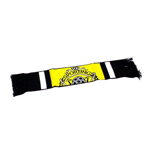 Car scarf
