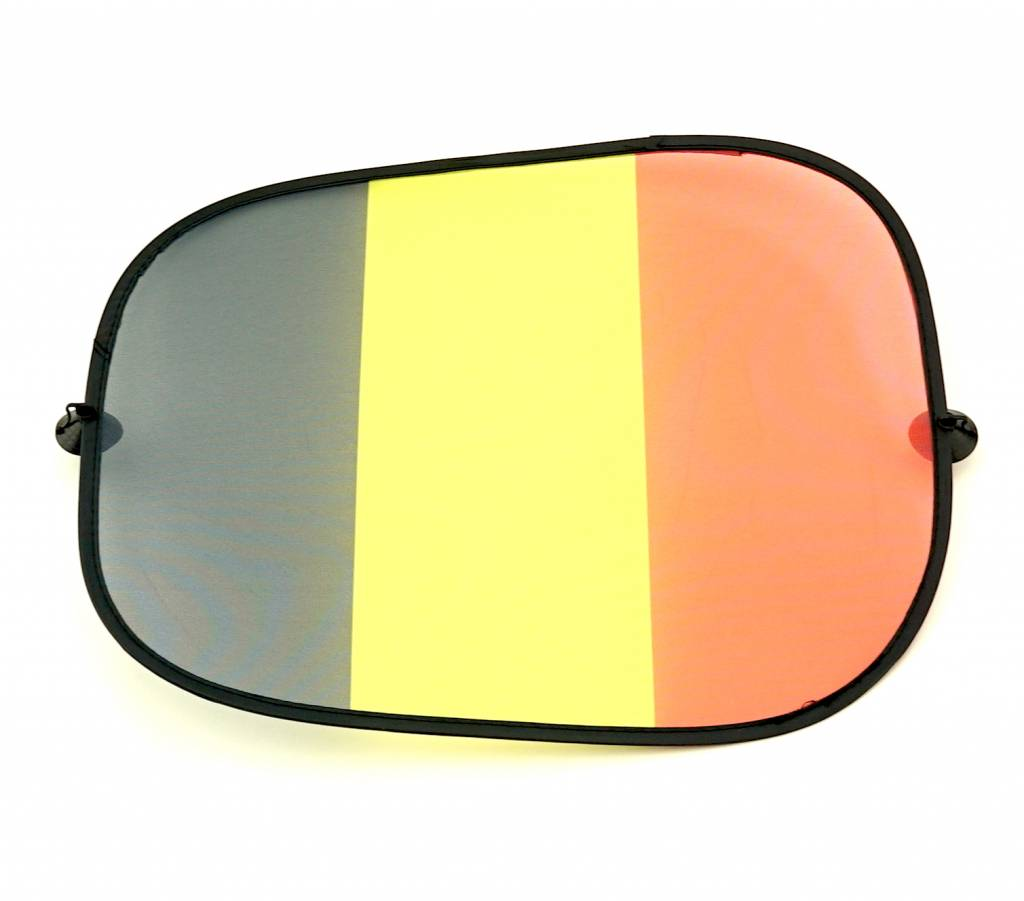 Car shades set