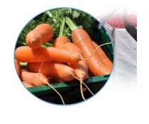 Bakken en kratten voor groenten & fruit