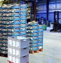 Plastic warehouse crates