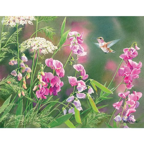 LANG WILD SWEET PEA Box Note Cards