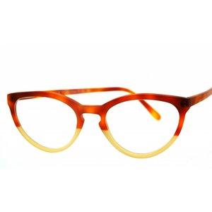 Arnold Booden bril 4538 kleur 170082 170 mat