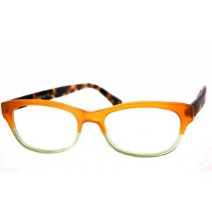 Arnold Booden bril 4537 kleur 75071 126 mat