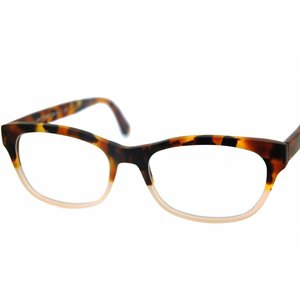 Arnold Booden bril 4537 kleur 113082 113 mat