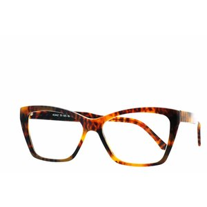 Arnold Booden bril 4342 kleur 111 glans