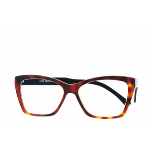 Arnold Booden bril 4342 kleur 102 6 mat