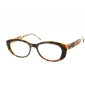 Arnold Booden bril 4100 kleur 5513 113 glans