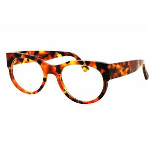Arnold Booden bril 4013 kleur 113 mat