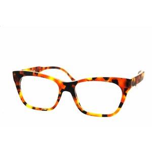 Arnold Booden bril 3662 kleur 113 mat
