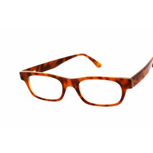 Arnold Booden Glasses Arnold Booden 3201 color Cash & Horn 9 glasses customized colors moored moglijk