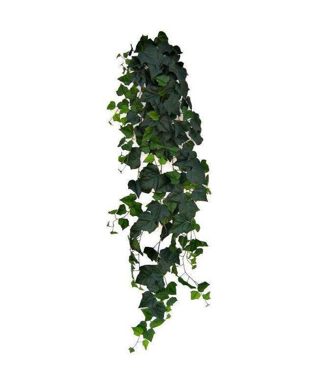 Hedera hangplant 180cm Deluxe