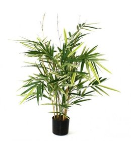 Bamboe bont 70cm