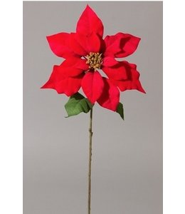 Poinsettia 60 cm