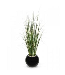 Bamboe grasplant 120 cm