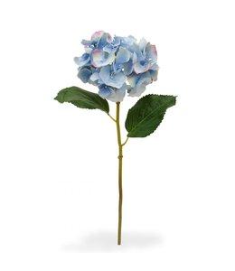 Hortensia Deluxe steelbloem 45 cm blauw
