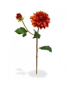 Dahlia tak x2 50 cm oranje