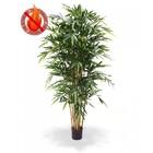 Bamboe Deluxe 180 cm FR
