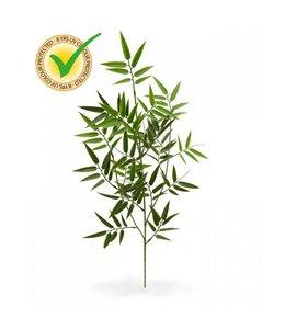 Kunststof Bamboe Tak 65 cm UV