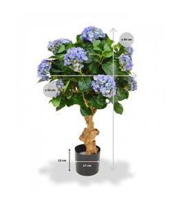 Hortensia Deluxe op stam 90 cm blauw