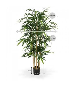 Bamboe 150cm