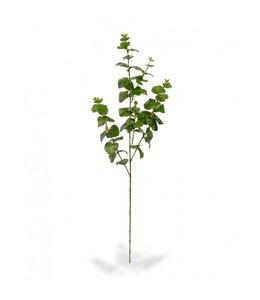 Eucalyptus kunsttak x3 100 cm