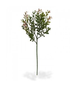 Buxustak 45 cm rood-groen