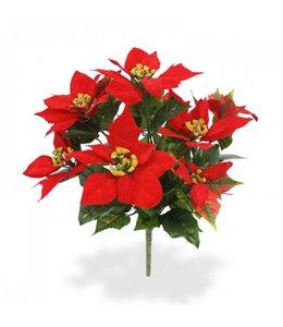 Poinsettia boeket x9 rood