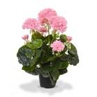 Geranium kunstplant 40 cm roze in pot