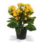 Kalanchoe kunstplant 30 cm oranje